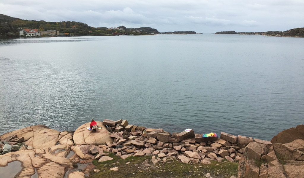 http://gerlesborgsskolan.se/wp-content/uploads/2019/02/07.jpg